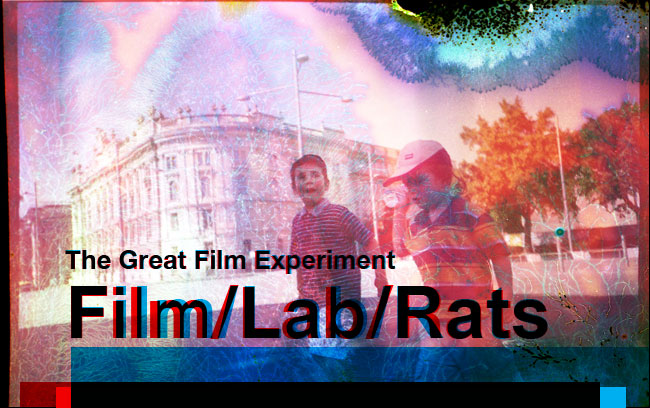 The Great Film Experiment, Film/Lab/Rats