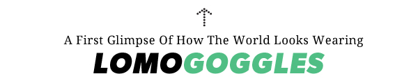 introducing lomo goggles